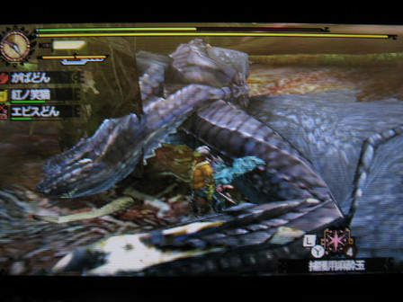 Mh4_03h