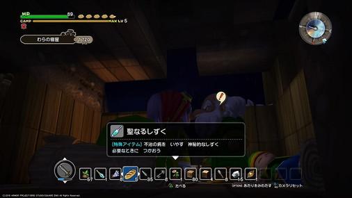 Dqb_009g6
