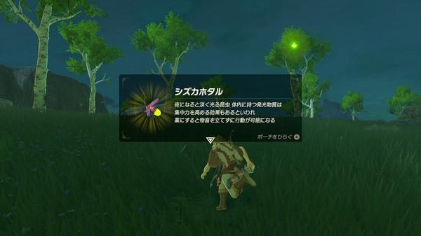 Zel_wild02g2x