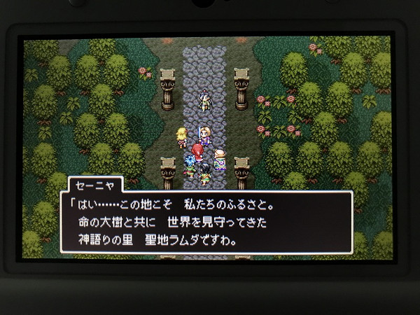 Dq11_06d7