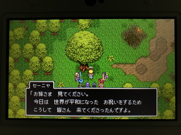Dq11_11a3