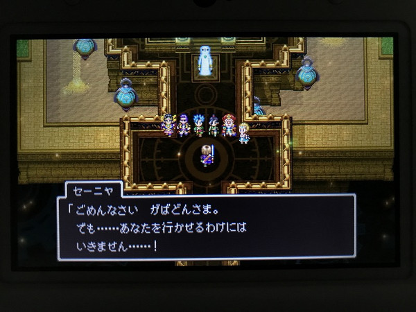 Dq11_11d