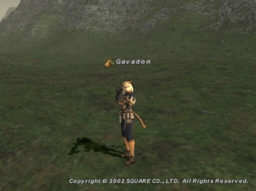 Gav021130124411a